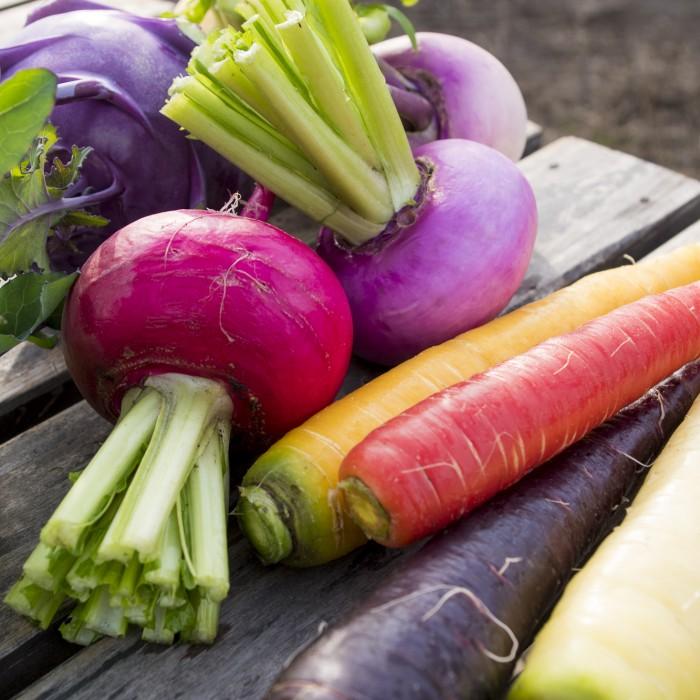 カラフルな野菜が特長