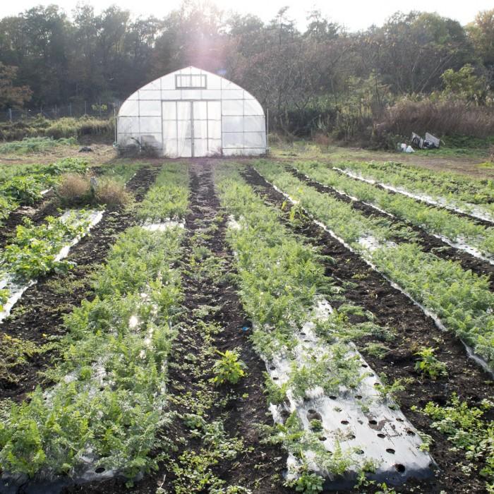 里山暮らしを体験できる農園